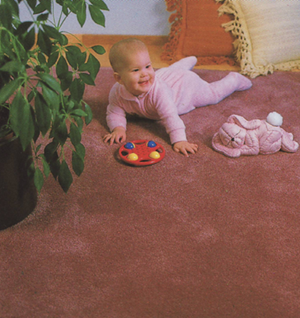 Elite Carpet Cleaning Inc uses Children Friendly Products